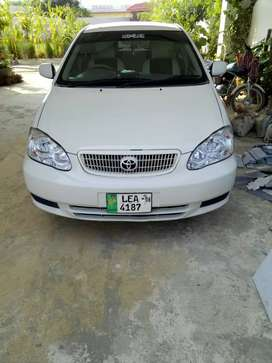 Toyota crola white well condition everything is OK