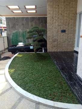 Pasang rumput pembuatan taman tukang taman murah Jakarta