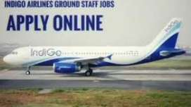 Urgent hiring for ground staff, ticket incharge