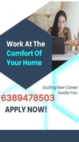 Fixed salary with incentives daily basis job