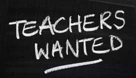 Urgent RequirementTeachers Wanted