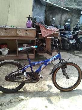 """Sepeda ukuran """"20"""