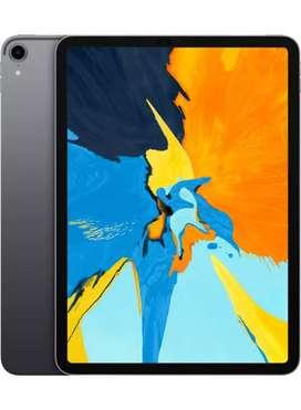ipad pro 11 256gb cellular under warranty + pencil 2nd + case