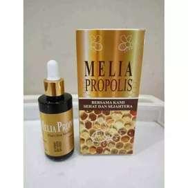 Propolis Melia sehat sejahtera