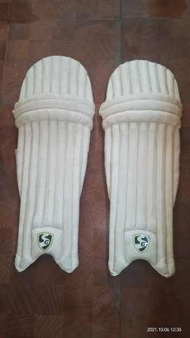 Cricket mens pads