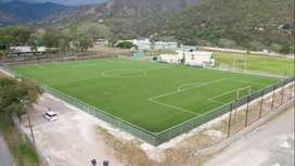 Grass   Artificial Grass available in Pakistan