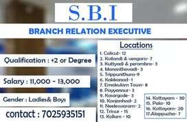 SBI credit card sales