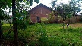 Dijual cepat tanah murah Mijen 345m2 depan Agro wisata Purwosari