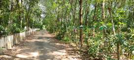 Residential plot for sale, chalakudy meloor