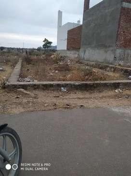 29X60=191 gaj Society patta  Sikar Road Jaipur