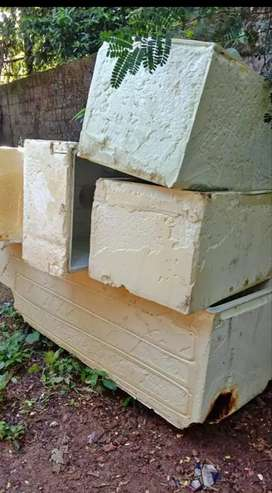 Fridge box for fish cultivation