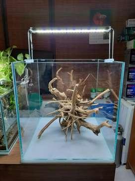Soil, substitute and fertiliser for planted aquarium
