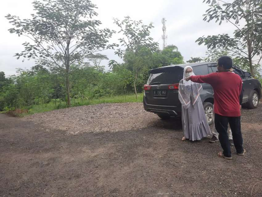 Jual murah tanah kavling pinggir jl.provinsi di Bogor bonus pohon jati
