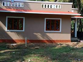 6 1/2 cent land and house sale in palottuvayal