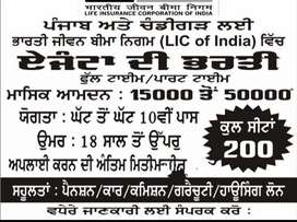 In Ludhiana Apply for LIC Agency. Preference Age 25-40 years.