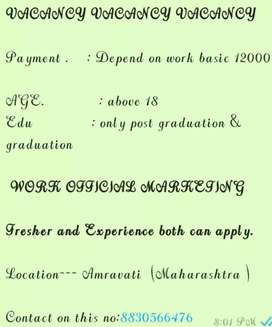 Vacancy for work official marketing
