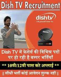 DishTV Process job openings in Delhi/ NCR
