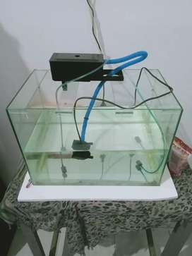 Jual aquarium  ukuran 30×20x20