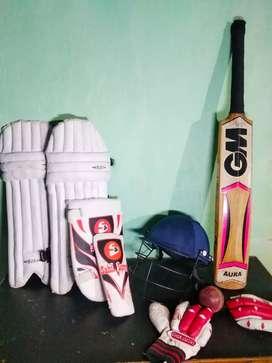 Cricket kit and orignal english willow bat