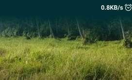 2 ഏക്കർ 14 സെന്റ് പാടം വിൽപനക്ക് - പറവട്ടാനി.