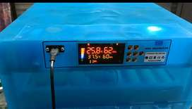 Egg incubator used 64 eggs capacity automatic only 24000