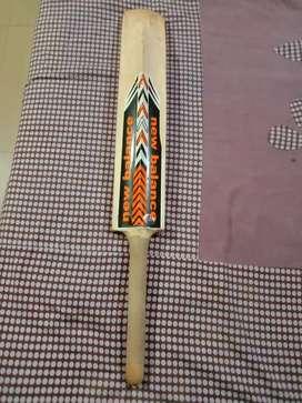 Tennis ball bat