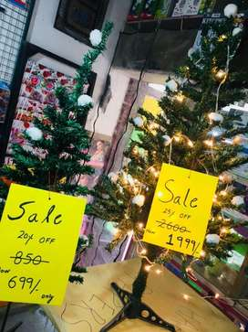 Christmax Trees for Sale