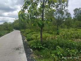 Jual tanah 1 Hektar Wonogiri