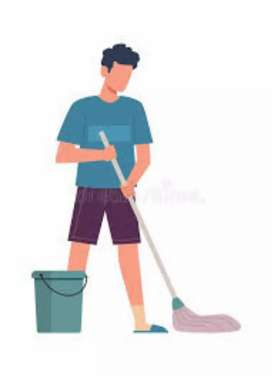 Sweeper/Cleaner required for home.