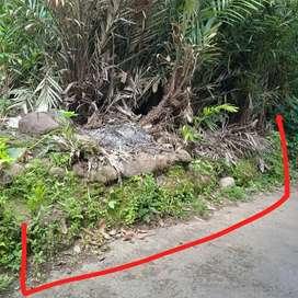 Tanah Strategis Murah di Gading Belakang Kecamatan Turi & KUA Turi