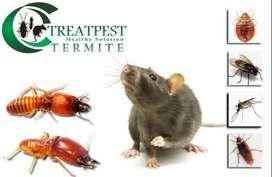 Jasa basmi nyamuk kecoa lalat rayap kutu semut bedbug tomcat hama liar