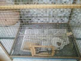 Birds cage in very good condition