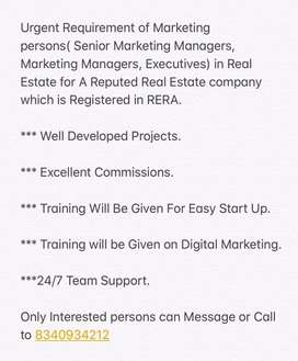 Marketing persons in REAL ESTATE.