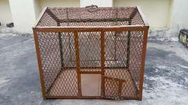 A strong iron cage for birds