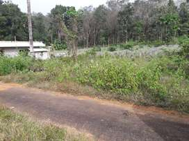 11 Cent housing plot in gated community