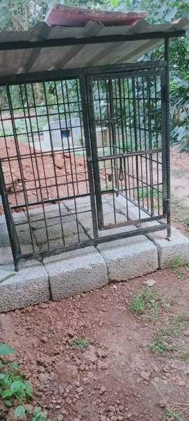 Dog cage 6200/-