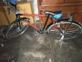 Phoneix  bicycle for sale