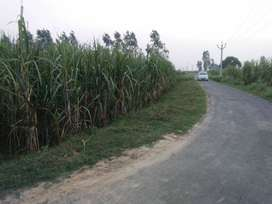 6 BIGHA CORNER LAND ATTACHED RING ROAD ONLY 42 LAC (KINA NAGAR MEERUT)