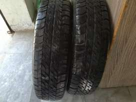 Tyre 13 inch