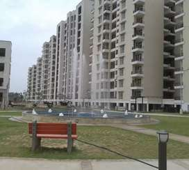 3 BHK flat for rent at best society of VIP road