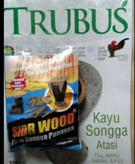 Herbal Alami Kayu Songga