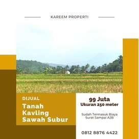 Tanah Kavling Sawah Produktif Modern Luas 250 meter