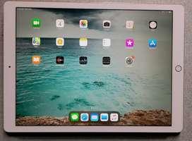 iPad Pro 12.9 inch (512 GB) WiFi + Cellular