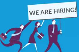 Hiring for sales executive for digital payment company