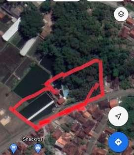 Dijual Tanah + vila + kolam renang + kolam ikan pribadi