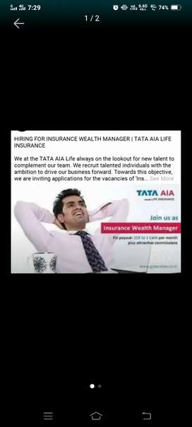 Insurance Wealth Manager