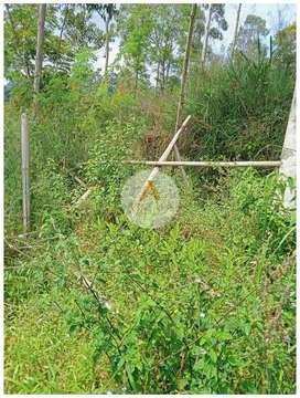 Jual Tanah Kebun di Cisondari Pasir Jambu Ciwidey