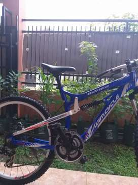 Sepeda MTB Wimcycle Boxer 1.0