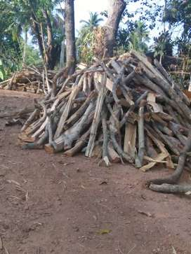 Woods firewoods