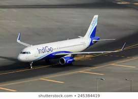 Hiring for ground staff limited seats